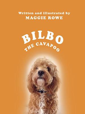Bilbo the Cavapoo