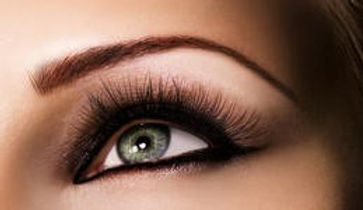 upper lash photo.jpg