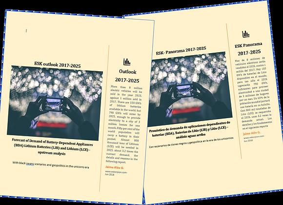 ESK Outlook 2017-2025 Demand of Lithium, Batteries and Batt-Dependent Appliances