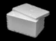Box 10KG New2-min.png