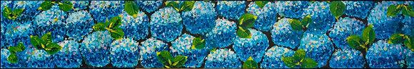 Blue Hydrangeas - 181ST20