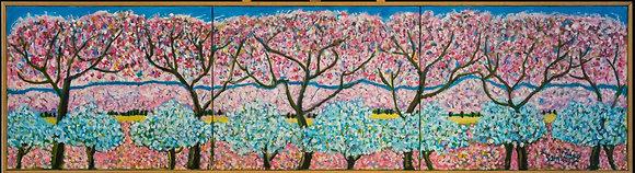 Cherry Blossom - 0180ST20