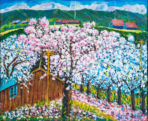 Cherry Blossoms - #104ST20