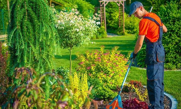 jardineiro-1.jpg
