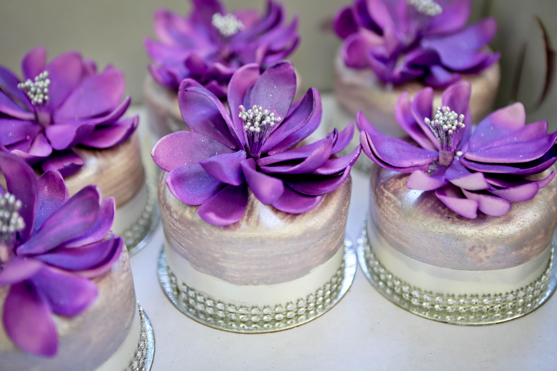 Mini Cakes TL Cakes Meshell