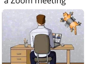 Online meetings- I never knew how stressful these were!    Jane Green connective@jgjanegreen