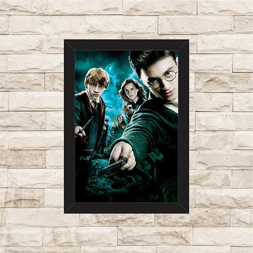 1428 - Quadro com moldura Harry Potter