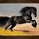 Thumbnail: 6214 - Quadro com moldura Cavalo