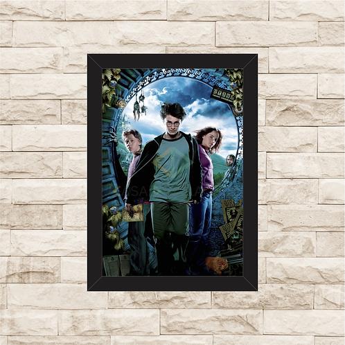 1423 - Quadro com moldura Harry Potter