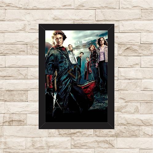1425 - Quadro com moldura Harry Potter
