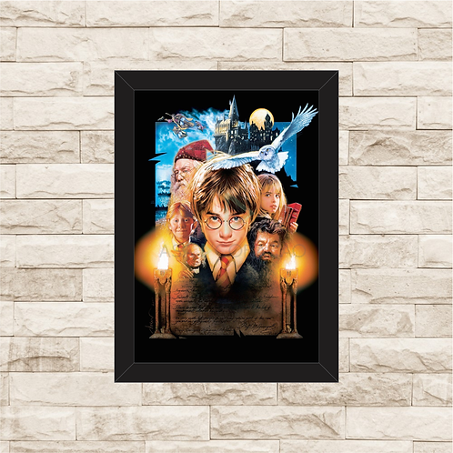 1265 - Quadro com moldura Harry Potter