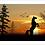 Thumbnail: 6216 - Quadro com moldura Cavalo