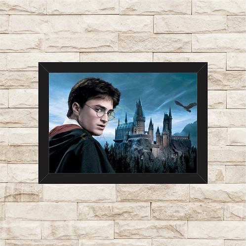 1042 - Quadro com moldura Harry Potter