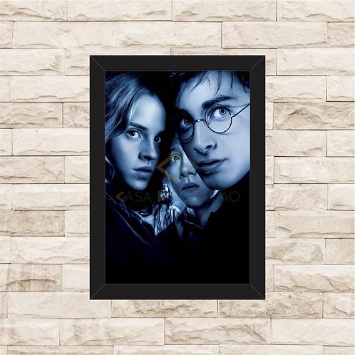 1424 - Quadro com moldura Harry Potter