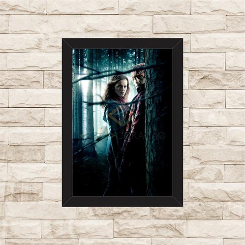 1435 - Quadro com moldura Harry Potter - Hermione e Rony