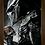 Thumbnail: 1601 - Quadro com moldura O Predador