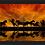 Thumbnail: 6215 - Quadro com moldura Cavalos