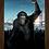 Thumbnail: 1597 - Quadro com moldura Planeta dos Macacos - A Origem