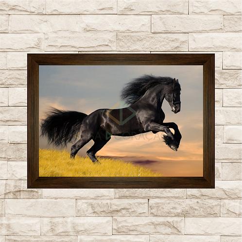 6214 - Quadro com moldura Cavalo