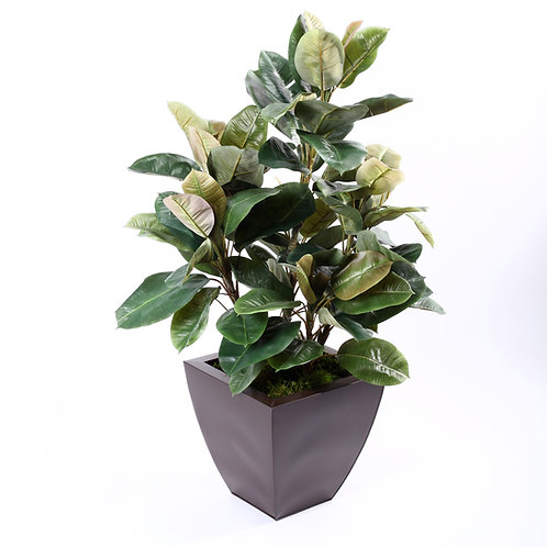 2622-40 Rubber Plant in Zinc 40""