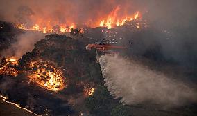 bushfires 2.jpg