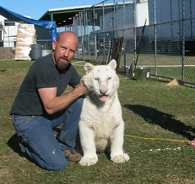 Steve Wiberg at Ringling Brothers with a white tiger