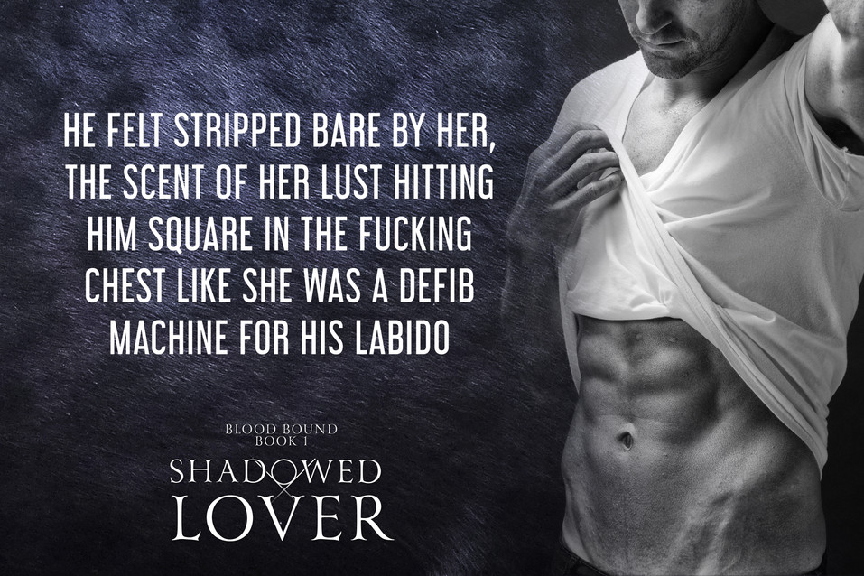SHADOWED-LOVER-LABIDO.jpg