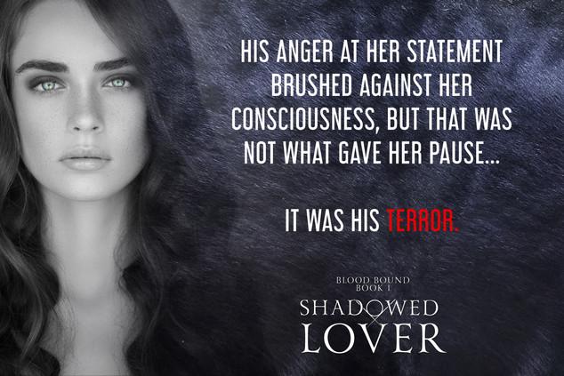 SHADOWED-LOVER-TERROR.jpg