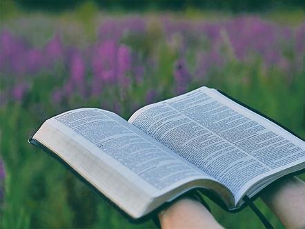 5377487-book-bible-reading-read-open-bib
