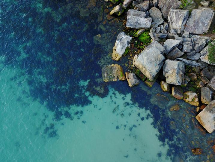 shelley rocks.jpg