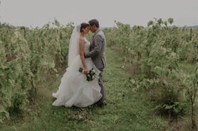 Bride and Groom at Holland Marsh Winerie