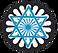 IAJF Logo star (no back).png