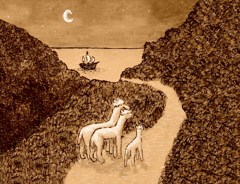 Claire Marchant - Alpaca