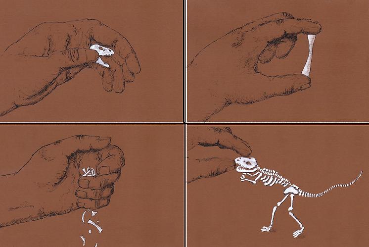 Claire Marchant - Dinosaur postcards.png