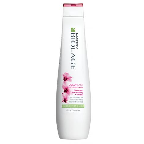 MATRIX BIOLAGE Coloursource Shampoo 400ml