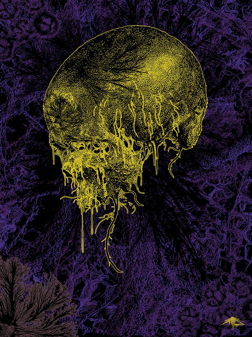 The-inevitability-of-the-fungal-envelopm