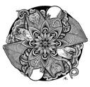 Nocturnal Mandala.jpg