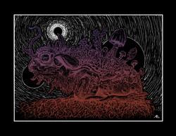 Sonoran Void (Desert Toad 1) 8.5 x 11
