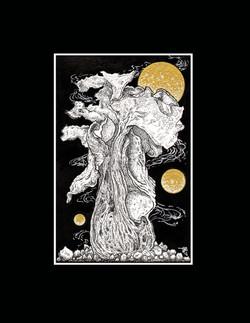 Cosmic Growth