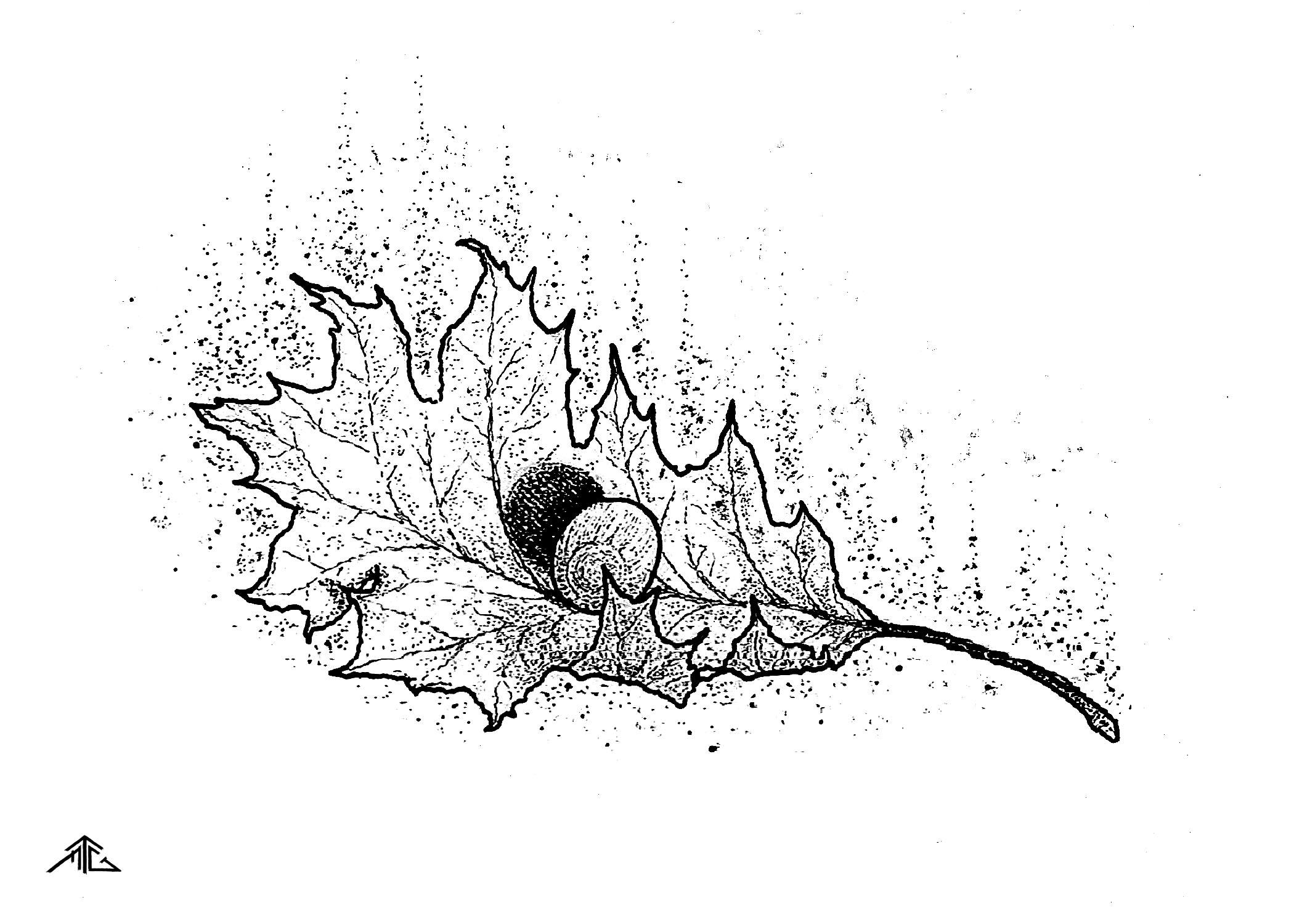 fall leaf line