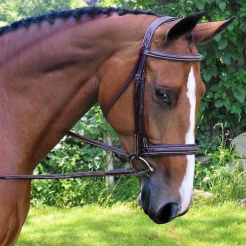 BLACK OAK LAUREL BRIDLE 51200
