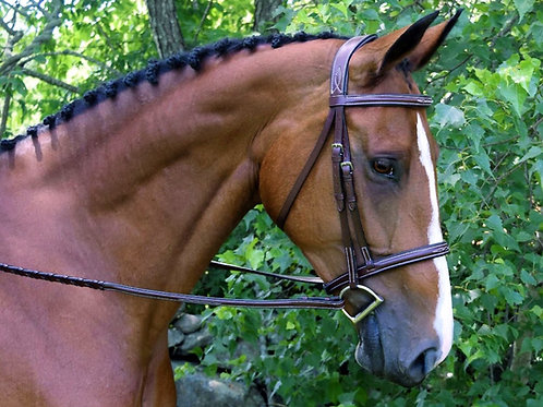 RED BARN SYNERGY BRIDLE 51130