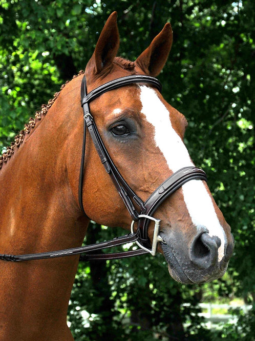 RED BARN TRYON BRIDLE 51110