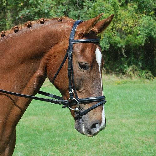 Red Barn Levade Bridle 51020