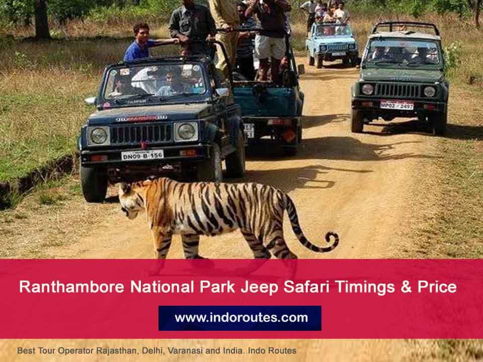 Ranthambore National Park Jeep Safari timings