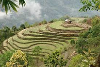 north east tour packages from guwahati, north east india tour from delhi