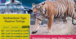 Ranthambore Full Day Safari Price | Ranthambore National Park Jeep Safari Cost