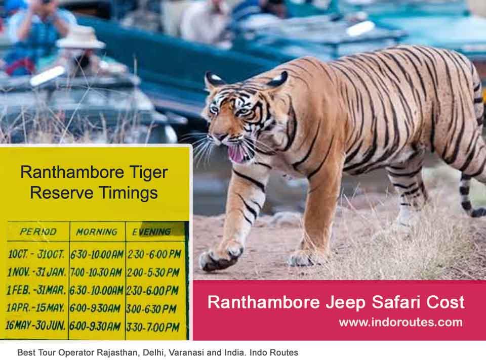 Ranthambore Full Day Safari Price