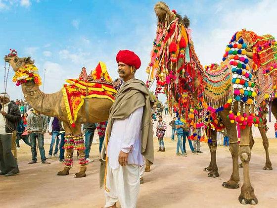 6 Days Rajasthan Tour