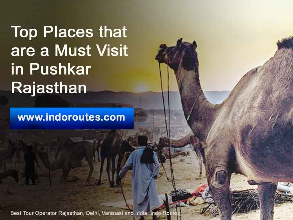 Top Places that are a Must Visit in Pushkar Rajasthan